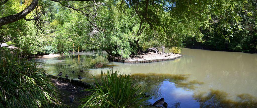 Blackheath Memorial Park Pond