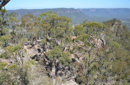 Shipley Plateau